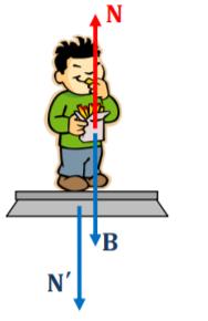 Μέτρηση του βάρους