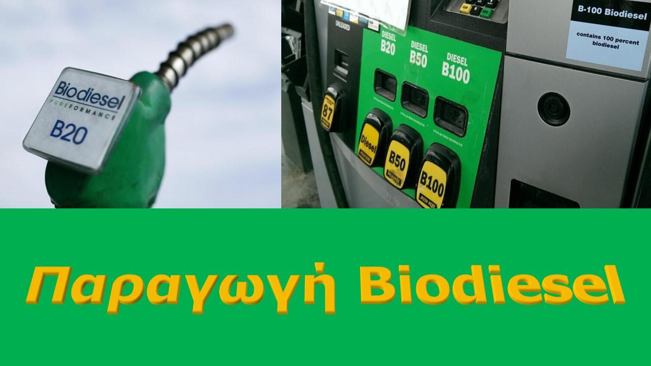 Παραγωγή Biodiesel