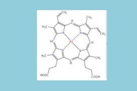 Δεσμός υδρογόνου και 34ος ΠΔΧΜ