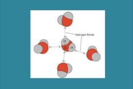 Πλήθος δεσμών υδρογόνου…