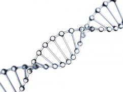 65 Ασκήσεις (m/c) Βιολογίας Γ Λυκείου με την νέα ύλη